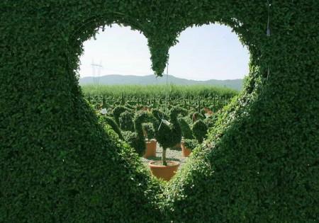Franta romantica